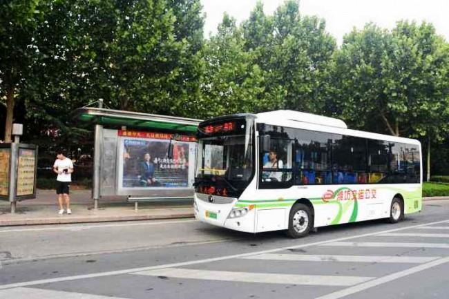 6月11日起 潍坊9路公交车将调整运行线路