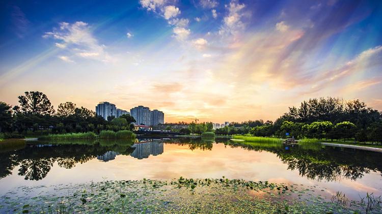 总书记视察一周年——天津姑娘见证了青岛上流佳苑的变化