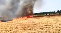 33秒|麦收时节麦田起火 村民质疑道路限高限宽杆阻碍救火