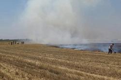 麦收时节明火烧麦茬!冠县两村民被依法行政拘留
