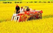 潍坊职业农民创业大赛要来了!返乡创业农民工也能拿奖