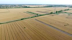 聊城市启动永久基本农田储备区划定和核实整改工作