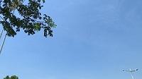 海丽气象吧 | 山东继续发布高温黄色预警信号 济南等7市局地可达37℃