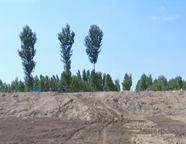 商河:河道清淤占用耕地,补偿难兑现?施工队与村民再签补偿协议