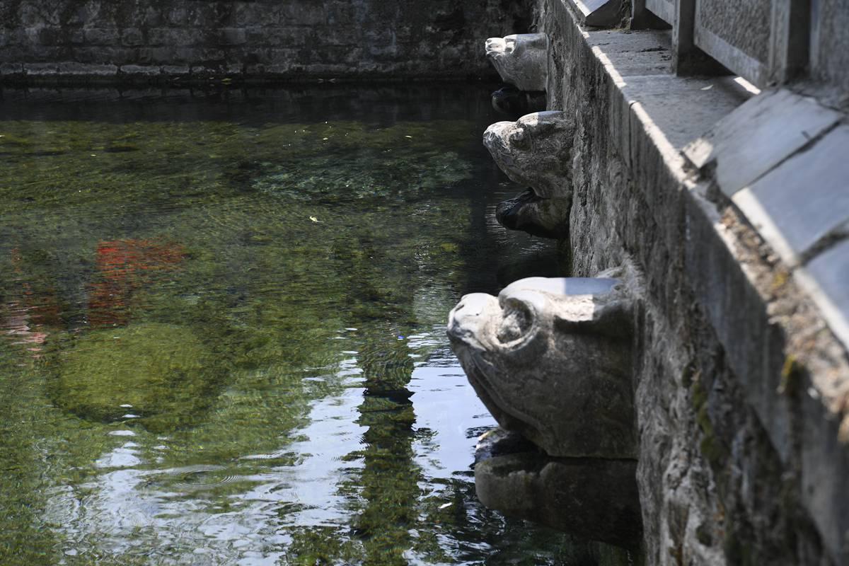 黑虎泉取水点关停泉水浴场关闭 济南市民期盼雨季早日到来