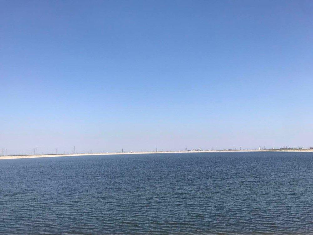 山东抗旱浇灌面积达6109万亩 部分地区旱情得到控制