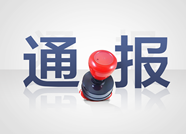 """潍坊市通报3起党员干部和公职人员涉黑涉恶腐败和充当""""保护伞""""典型问题"""