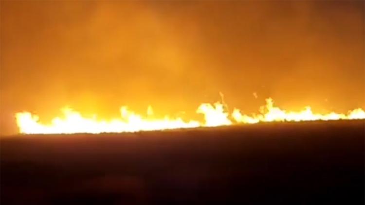 36秒丨火光冲天!博兴一村庄麦茬地发生火灾