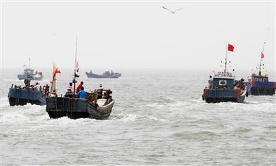 山东:2019年海蜇专项资源品种限额捕捞 渔船需全程定位