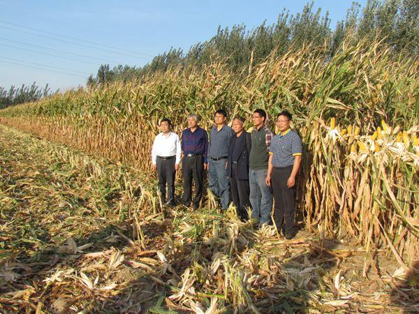 山东百县可享受农技推广服务补助 原则上农业生产大县全覆盖