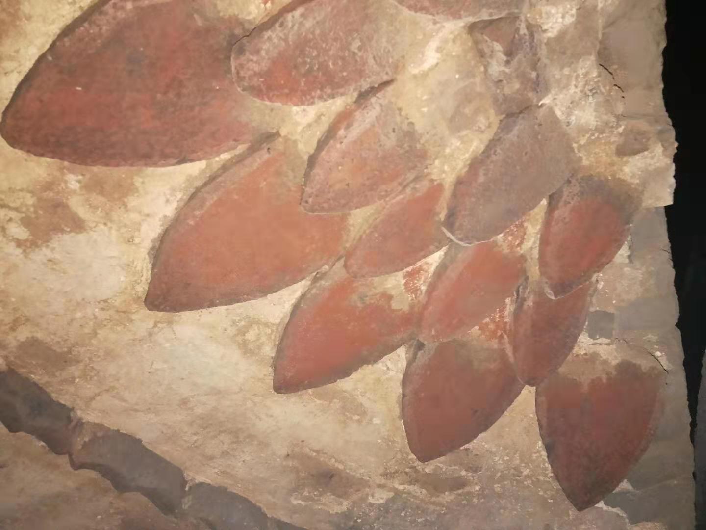 36秒丨济南长清发现疑似元代古墓 穹顶莲花浮雕墙壁有精美壁画