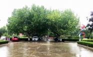 """海丽气象吧丨大雨突袭3小时 潍坊临朐两座水库雨量""""破百"""""""