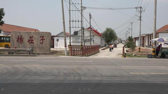 滨州无棣棉田受雹灾 相关部门已启动投保救灾程序