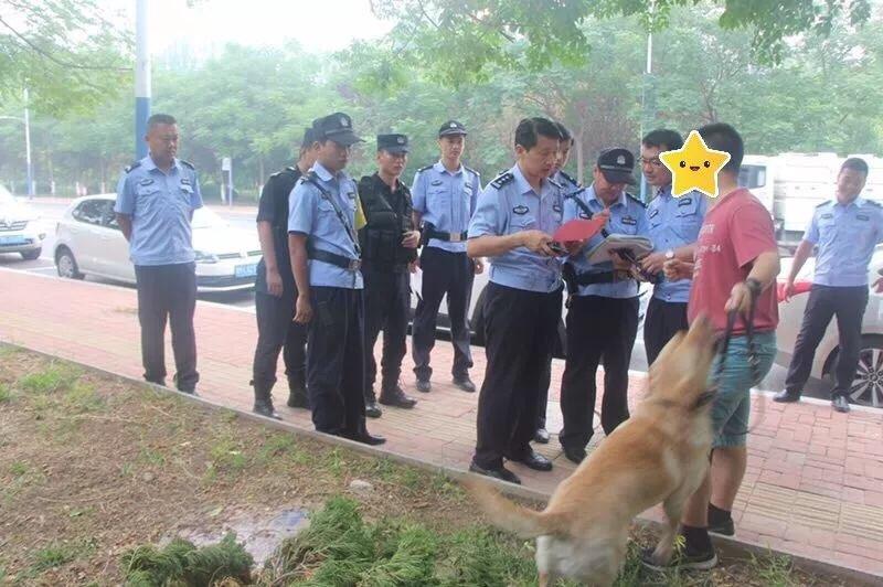 动真格!滨州开发区警方开展城区违规养犬专项整治行动