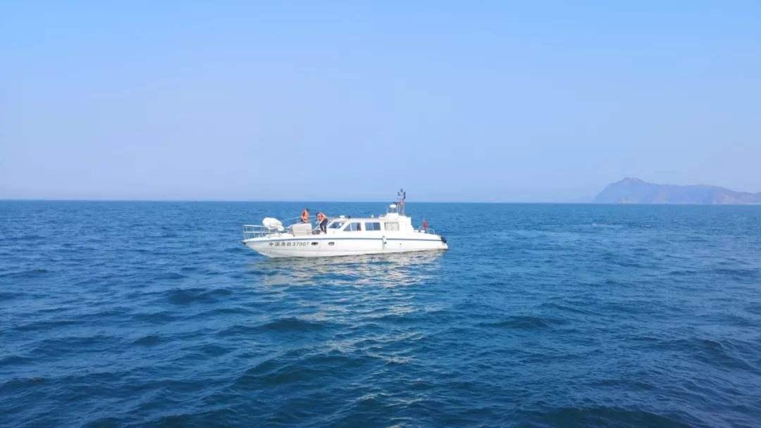 山东上半年出动渔政执法人员4.8万余人次 查办涉案渔获物4万余公斤