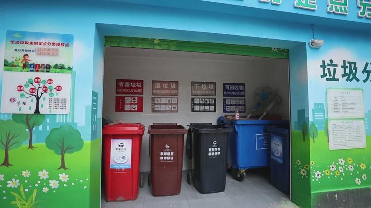 一分钟看懂上海人如何垃圾分类 山东能向上海学什么?