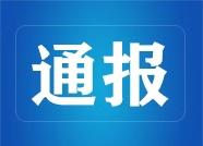 """潍坊公安通报7起打击非法""""带路""""和非法中介典型案例"""