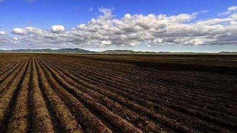 山东确保到2020年受污染耕地安全利用率达91%左右