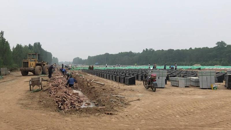 济南吴家堡村头建起大片墓地 紧挨黄河大坝距民宅仅50米