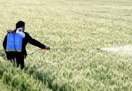 山东通报55家经营者农药生产、经营许可审查情况 部分企业项目不合格