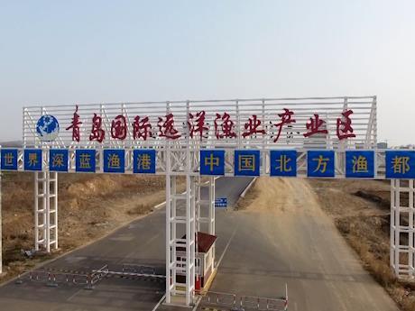 走进深蓝|中国北方国际水产品交易中心和冷链物流基地15万吨冷库正式启用