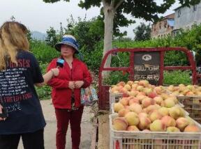 【闪电新闻·助农行动】济南南山桃周末有了公交专线,全省90多个超市网点可以买