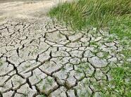 旱情得到有效缓解 山东在田作物受旱面积降至294万亩