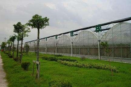公示|山东遴选出29个省级现代农业产业园创建主体