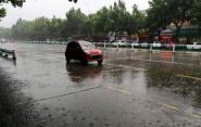 """海丽气象吧丨潍坊启动""""阴雨""""模式 农业生产应注意预防病虫害"""