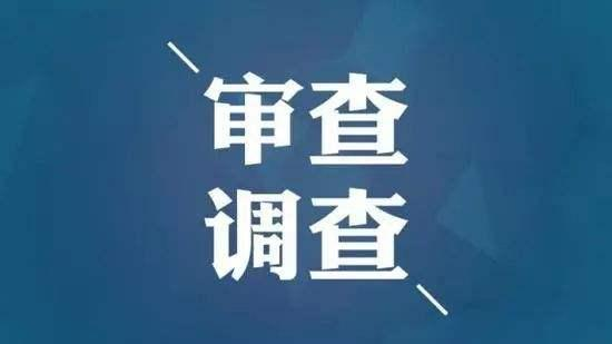 临沂市兰山商城党委委员、管委会副主任洪剑主动投案