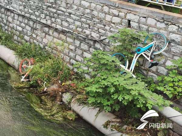 谁干的 济南100米河道被扔下12辆共享单车