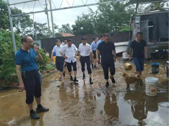 日照强降雨致两镇受灾严重 2人失踪18处河道被冲毁