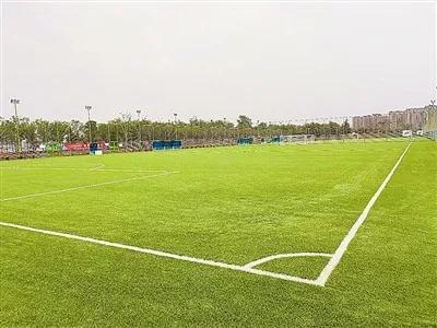 """2019""""哥德杯中国""""世界青少年足球赛8月10日在青岛举行"""