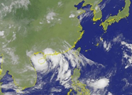 """泰安市安委会发布紧急通知!全力做好""""利奇马""""台风防御工作"""