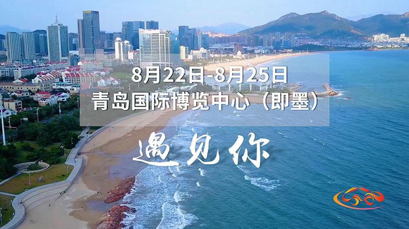 全球百余品牌齐聚!山东广电带给您不一样的车展~