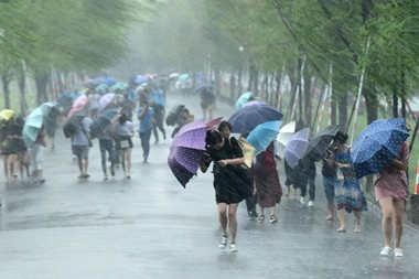 海丽气象吧丨台风来了怎么办?海丽给您支妙招,遇到不同情况这样处理