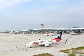 8月11日,烟台机场已取消航班167架次