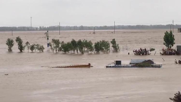 26秒|惊险!弥河水流暴涨河面宽千米 水文监测站一楼被淹没