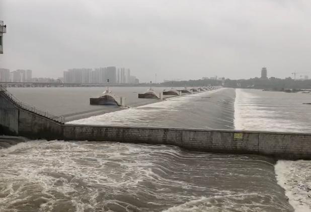 """预警!受""""利奇马""""影响 莱州湾等地将现200厘米风暴增水"""