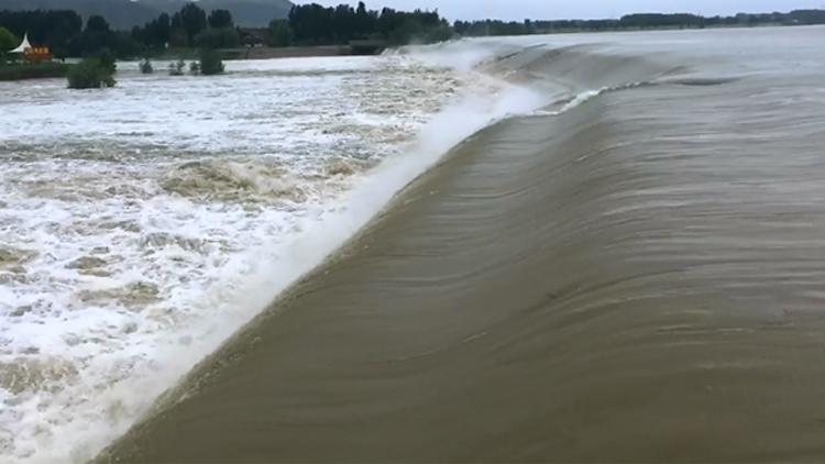 32秒丨雨后东平戴村坝高崖现飞瀑景观 汶河古桥被淹没