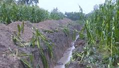 为解决村内洪涝,淄博种粮大户在自家承包田挖60米排洪沟