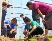 【抢险救灾在行动】山东各地不等不靠积极开展自救 恢复农业生产