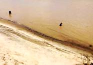 """险!水位下降 寿光弥河迎来了这些""""不速之客"""""""