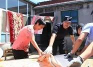 """包村联户送温暖 寿光""""人民卫士""""帮助受灾群众重建家园"""