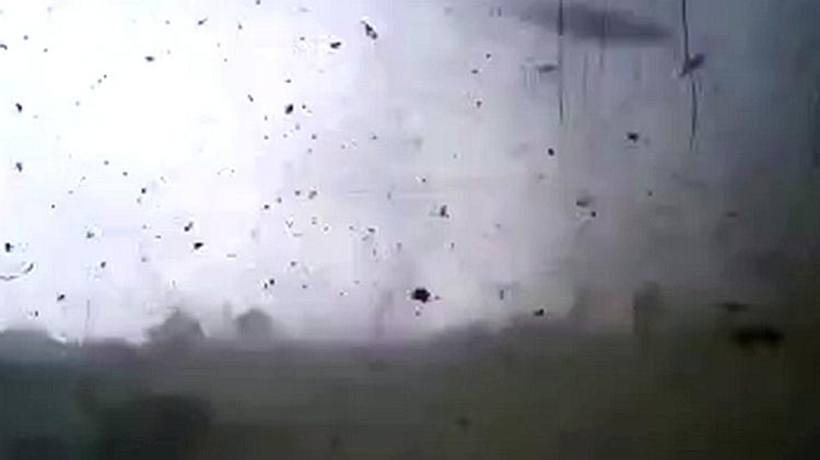 29秒丨摄像头记录威海文登龙卷风现场 狂风肆虐草木被连根拔起