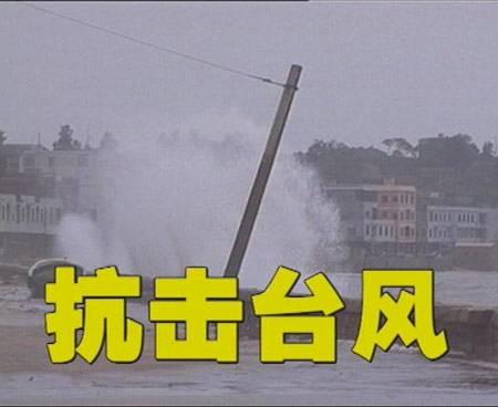 山东召开抗击台风抢险救灾工作表扬奖励大会 德州2个集体5名个人受到表扬