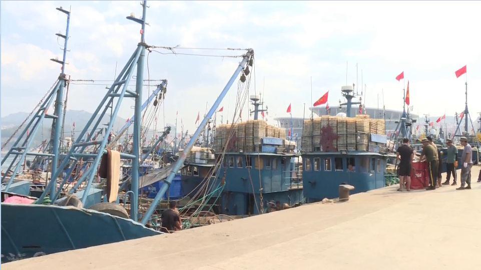 67秒丨开海啦!螃蟹、爬虾、鲳鱼、带鱼……山东各大渔港热闹非凡