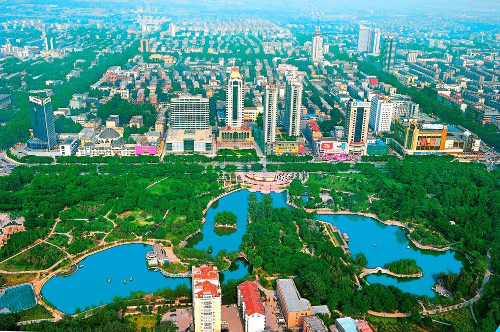 淄博:栽下科技大树 引得金凤凰来