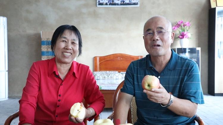 乡村追梦人丨年近70在盐碱地种出红苹果 袁景海:要把滨海红苹果推向全世界