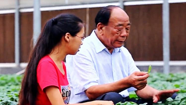 """49秒丨喜迎""""农民丰收节"""" 看看""""中国蔬菜之乡""""寿光的农业有多强!"""